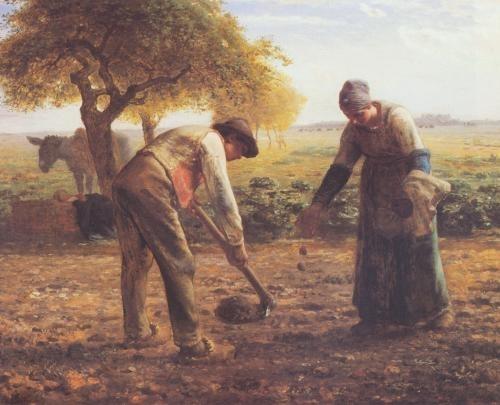 van gogh contadini
